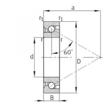45 mm x 100 mm x 20 mm  FAG BSB045100-T Thrust Load Angular Contact Ball Bearings