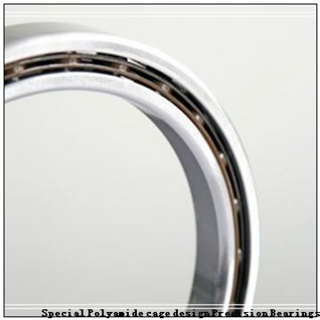 FAG S(F)R2-6SS*  Special Polyamide cage design Precision Bearings