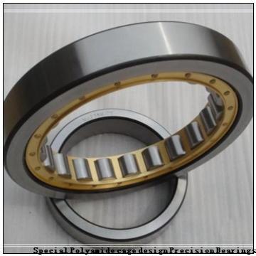 BARDEN ZSB109E Special Polyamide cage design Precision Bearings