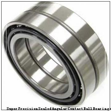 BARDEN ZSB100C Super Precision Sealed Angular Contact Ball Bearings