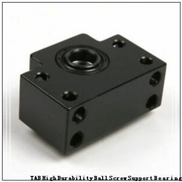 30 mm x 55 mm x 19 mm  NACHI NN3006 TAB High Durability Ball Screw Support Bearing