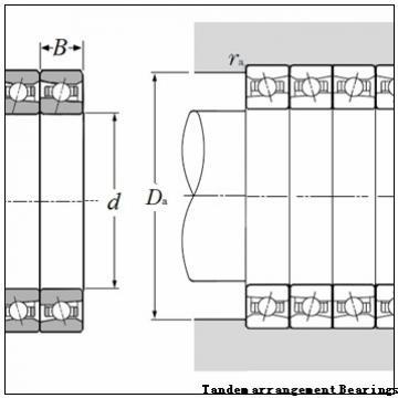 BARDEN Single-row cylindrical roller bearing Tandem arrangement Bearings